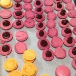 coques roses de macarons et ganache au chocolat noir